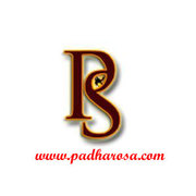 udaipur travel agents rajasthan tour operators PADHARO SA HOLIDAYS