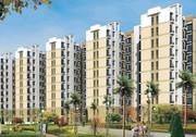 Explore Pleasurable Living Experience at Avalon Rangoli @ 09873245830