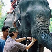 elephant work in india