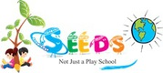 Play Group Store For Toys & Books– Seeds Education