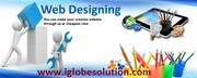 Web design company in jaipur - iGlobe Solutions