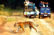 Jaipur Tour and Travels,