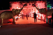 Dream Day Creations Jaipur,  Pankaj Sharma Wedding Planner Jaipur.