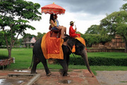Elephant Ride | Elephant Safari In Jaipur,  Amer India