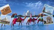 ShobhaTours - Online Travel Agency Udaipur