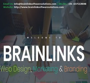 Software Company in Jaipur,  India - BrainLink Software Solutions