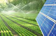 Solar Powered Water Pump for Irrigation | Buy Solar Water Pumps