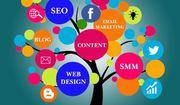 Digital Marketing Companies in Udaipur